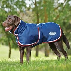Weatherbeeta Parka 1200D 220g Belly Flap Waterproof Dog Coat  This dog rug is fitted with a 220g fill this waterproof and breathable dog coat has a 1200D outer shell, adjustable touch tape closures, reflective strips. It also features a full wrap belly and chest closure with a large collar for great warmth, protection and comfort.   Retails between £18.90 - £22.95   https://fieldandpheasant.co.uk/blogs/news/five-waterproof-dog-coats-for-the-working-dog
