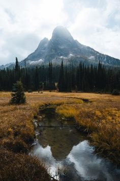 alecsgrg:North Cascades National Park | ( by Dylan Kato )