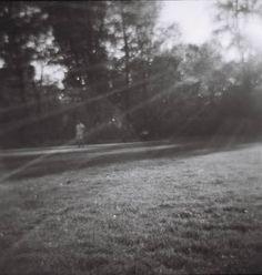 Analog Photography Sunshine