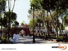 MONEYBACK MEXICO. Coyoacán is a bohemian neighborhood with a great cultural and tourist infrastructure. It is a place of great intellectual influx, colonial houses, gardens, bookstores, bars, markets, restaurants, museums and a large square with a church preserving a village traditional air. Search for affiliated businesses to get a tax refund with Moneyback! #moneyback www.moneyback.mx