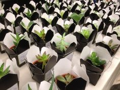 Great wedding favor idea - potted succulents in Chinese takeout boxes. Guests can grab and go, and these hardy little plants can survive travel wear and tear.  (Hummingbird Bridal and Events)