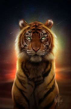 Wild Animal Wallpaper, Tiger Wallpaper, Tiger Images, Tiger Pictures, Tiger Artwork, Tiger Painting, Big Cats Art, Cat Art, Animal Paintings