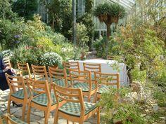 Fresh standesamt Steglitz Zehlendorf Botanischer Garten Mittelmeerhaus Innenansichten