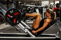 Programme musculation femme débutante gratuit