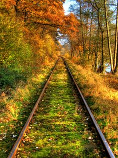 Germany: (this reminds me of the train tracks in the village of Rothenbergen near Gelnhausen, where my grandfather grew up.)