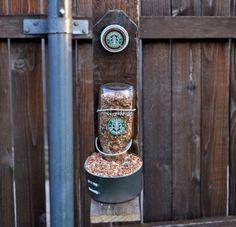 Starbucks Bird Feeder