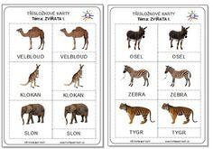 Montessori worksheets (cards) - Czech language