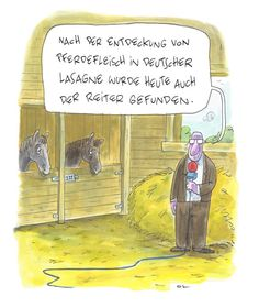 Pferdefleischreiter