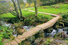 ROTEIRO DE ZAMÁNS | Galicia con niños | Galicia Máxica Different Perspectives, Spain Travel, Science And Nature, Garden Bridge, Sidewalk, Environment, 1, Outdoor Structures, Architecture