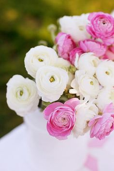 pink and white ranunculus...