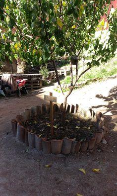 Alcorque en el jardín comunitario Esta es una plaza (Lavapiés, Madrid)