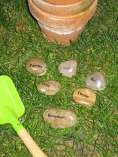Pebble plant markers