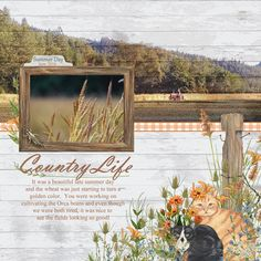 Country Life layout using Fencerow Collection by Angela Blanchard