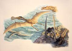 Ornithocheirus criorhynchus by John Sibbick