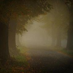 … depresja – nasz wspólny sekret … | Medycyna naturalna, nasze zdrowie, fizyczność i duchowość