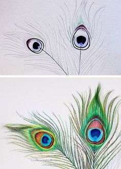 Pencil Drawings how to draw peacock feathers demo steps - This complex subject isn't as hard as it seems! Learn how to draw a peacock feather with realistic colors and texture with Craftsy's simple tutorial. Feather Drawing, Peacock Feathers Drawing, Peacock Drawing Simple, How To Draw Feathers, How To Draw Birds, Feather Sketch, Peacock Feather Tattoo, Tribal Feather, Watercolor Feather