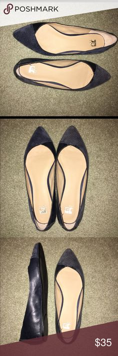 Navy Joe's Flats Navy suede and leather flats. I think only worn once. In basically new condition Joe's Shoes Flats & Loafers