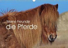 Meine Freunde die Pferde - CALVENDO In diesem Kalender sind schöne Bilder von Islandpferden, dem Welshpony Lulu, Pferden der Nordseeküste und mehr. Die Fotokünstlerin Angela Dölling hat mit ihren schönen Fotografien diesen Kalender für Pferdeliebhaber erstellt.