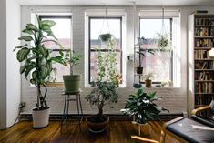 Quarantine isn't so lonely when you can talk to your plants. #interiordesign #houseplants #naturallight #homedesign #sandiego #thelocalrealty #sandiegorealestate #sandiegorealtor #carlsbadrealestate #carlsbadrealtor #realtor #realestate #sandiegorealestateagent #realestateagent Apartment Balcony Decorating, Apartment Bedroom Decor, Apartment Plants, Apartment Hacks, Apartment Interior, Apartment Design, Apartment Living, Small Indoor Plants, Instagram Worthy