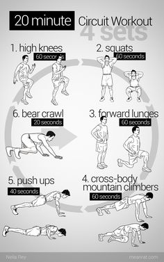 20 Minute Circuit Workout - good for days where you can't make it to the gym.