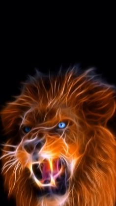 Lion Cool wallpaper for your iPhone 11 from Everpix Live Lion Wallpaper Iphone, Lion Live Wallpaper, Cool Live Wallpapers, Love Wallpaper Download, Wallpaper Free, Tiger Wallpaper, Animal Wallpaper, Galaxy Wallpaper, Love Wallpaper Backgrounds