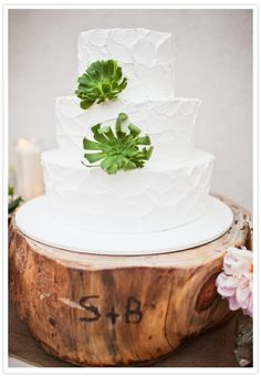 love the cake on the wood idea