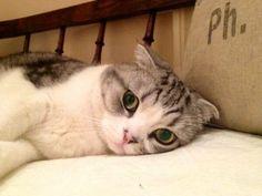 Meredith ♥ Those Eyes! :) <3
