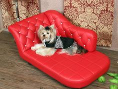 Red Luxury Couch Bed