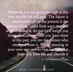 Whatever you are going through at this time in your life will pass. The future is what matters while the present is the journey there. Learn from your past and work to defeat it, do not let it weigh you down. You are not what you have done in the past, you are the person who emerged from it. You're amazing in your own way and no one can take that from you. Live life and cherish it. - Antonio Mara