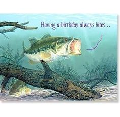 Front Having A Birthday Always BitesInside If Only The Fish Were So Reliable Happy BirthdayFeatures O Full Color Interior Colorful Envelope