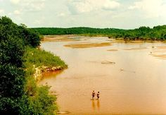 The Canadian River in Pottawatomie County. The river, which starts in New Mexico and crosses the High Plains before descending to the red rolling plains of central Oklahoma, has always been in the earth-moving business, but its silt burden jumped when farmers went to work on this land after the Land Run of 1889. The forest stretching back on either side of the river here is secondary.  Farmers cleared the original forest, put this land to cotton and corn for a couple of generations, as their…