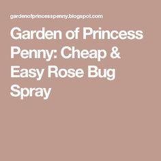 Garden of Princess Penny: Cheap & Easy Rose Bug Spray
