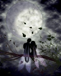 Fairy couple in the Moonlight