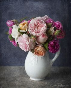 David Austin Roses- Photo by Georgianna Lane I love this idea of a chalkboard background! Beautiful!