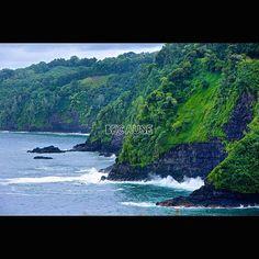 Beautiful, amazing road to Hana #travelbecause #roadtohana #maui #hawaii #todoagain
