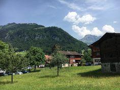 Blog über das Reisen und wandern. Zurzeit vorallem Wandern in der Schweiz. Fernziel ist der Fernwanderweg E1 Hiking Dogs, Switzerland, Summertime, Trail, Outdoor, Mountains, Nature, Plants, Blog