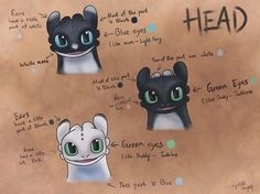 No image description available. Dreamworks Dragons, Dreamworks Animation, How To Train Dragon, How To Train Your, Toothless And Stitch, Animal Hugs, Hiccup And Astrid, Cute Dragons, Wings Of Fire