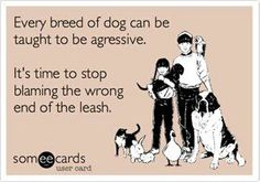 Wrong end of the leash