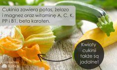 Cukinia to samo zdrowie! Oprócz właściwości zdrowotnych, jest też ceniona za to, że nie odkładają się w niej metale ciężkie.  #cukinia #warzywa #lato #witaminy #kwiat  #courgette #vegetables #summer #vitamin #flower