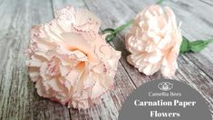 Carnation paper flower  DIY How to make Carnation from crepe paper Easy