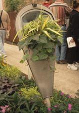 Container Gardening Whimsy- Successful Container Gardens - University of Illinois Extension