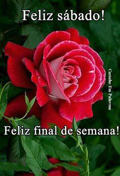 105 Mejores Imagenes De Feliz Sabado Happy Saturday Good