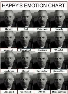 Happy's emotion chart. Ummm, David Labrava. Why wasn't he in my stocking. I was so naughty this year. I was positive I deserved him.