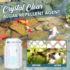 Algae Repellent Agent Pond Cleaning, Fish Pond Gardens, Green Algae, Non Organic, Pet Supply Stores, Online Pet Supplies, Microorganisms, Crystal Clear Water, Aquatic Plants