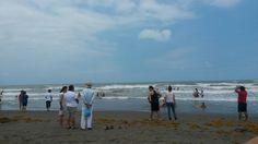#Playa Navarro, #VegaDeAlatorre, #Veracruz,  #México