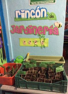 Primavera Rincones (9)                                                                                                                                                                                 Más Plant Projects, Science Projects, Preschool Class, Preschool Activities, Kindergarten, Classroom Setting, Classroom Decor, Summer Crafts, Diy And Crafts