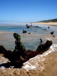 """The """"Magnat"""" Shipwreck Venus Bay, Victoria, Australia. The ship, wrecked in the early is buried in the sand and is approx from the beach. At low tide one can walk the over the sand to the wreck. As shown in photo. Visit Victoria, Us Beaches, Victoria Australia, Shipwreck, Big Island, Venus, Cape, Ships, Paintings"""
