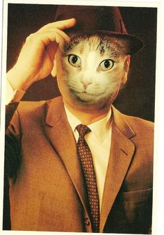Alfred Gescheidt Cat Postcard c.1982, American Cat Card, Kitten, Meow, Business Man Cat, Male Kitty Postcard retro 1980's Pussy Cat