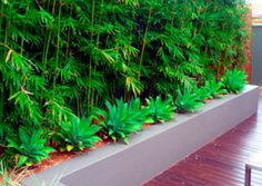 Creating Space With A Garden Design. Project Example from Valley Landscapes