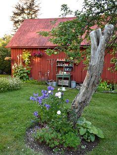 Fröken Gröns Blogg Red Cottage, Garden Cottage, Big Leaf Plants, Sweden House, Red Houses, Terrace Garden, Garden Stones, Garden Planning, Dream Garden
